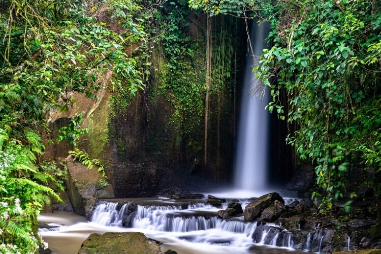 one of Bali's lesser-known waterfalls, Sumampan is hidden amid a lush jungle.