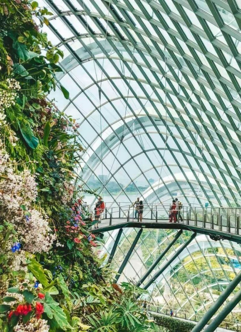 10 Best Attractions in Singapore You Can't Miss